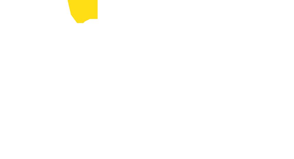logo_pim_smaller